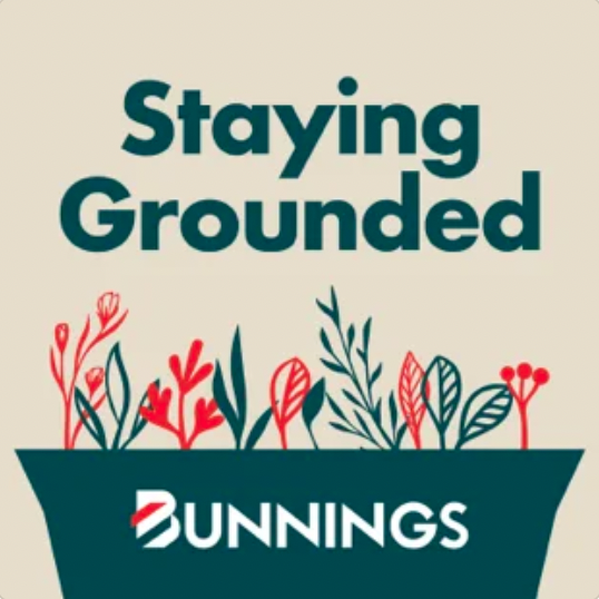 Staying Grounded, Bunnings